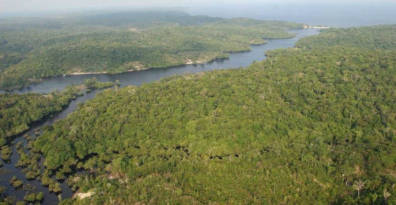 Importancia del Agua del Amazonas