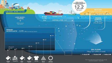 Plasticos en mares