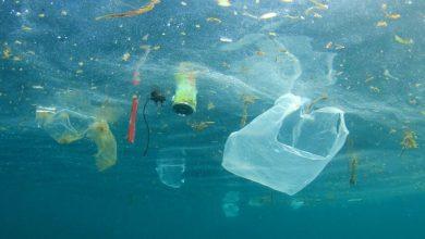 plastico en el agua